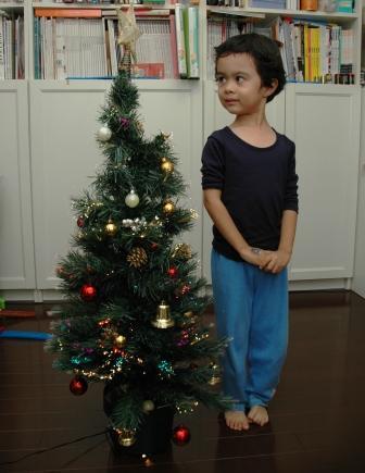 20101201.christmas tree.jpg