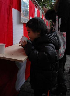 20110101.hatsumoude1.jpg