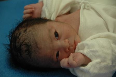 201105608.baby buzz2.jpg