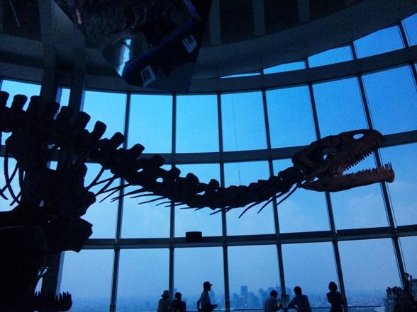 恐竜展100721_1.jpg