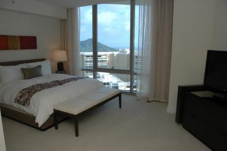 20110217.trump hotel11.jpg