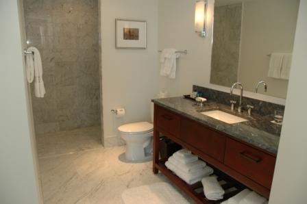 20110217.trump hotel19.jpg