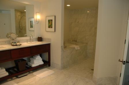 20110217.trump hotel9.jpg